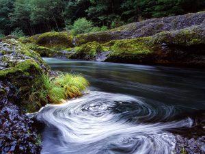 Swirling River
